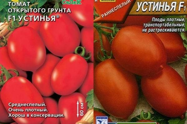 Описание сорта томата Ирма и его характеристики