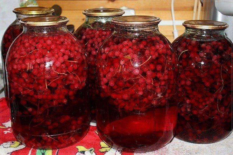 ТОП 6 рецептов компота из красной смородины и малины на зиму