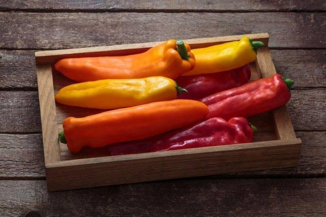 Описание сорта перцев рамиро: характеристики, урожайность, условия выращивания