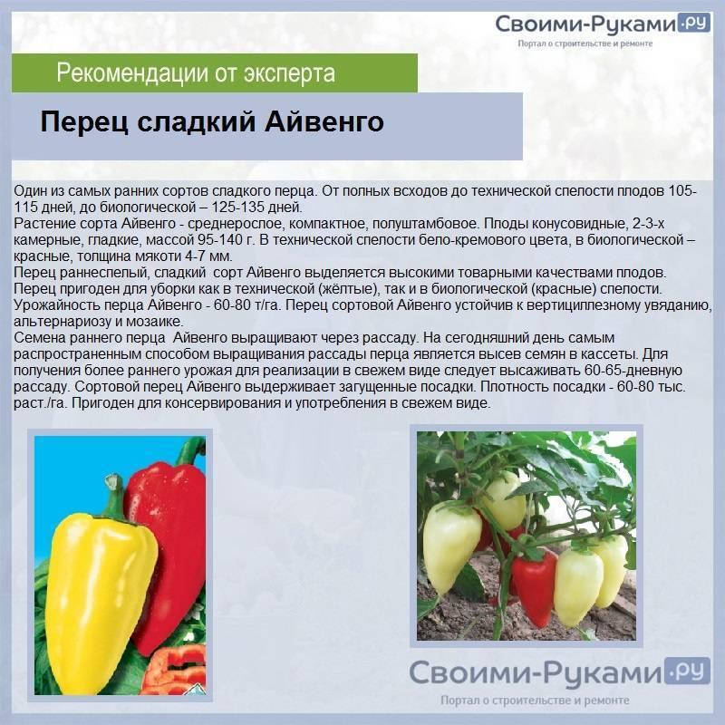 9 вкусных болгарских перцев. как выбрать лучший сорт?