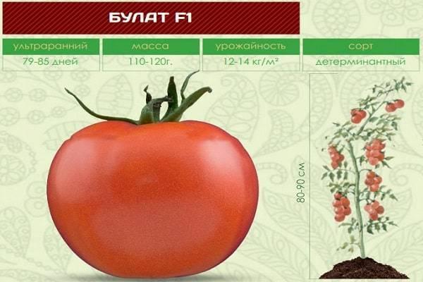 Томат Фрекен Бок: описание и характеристика сорта, выращивание с фото
