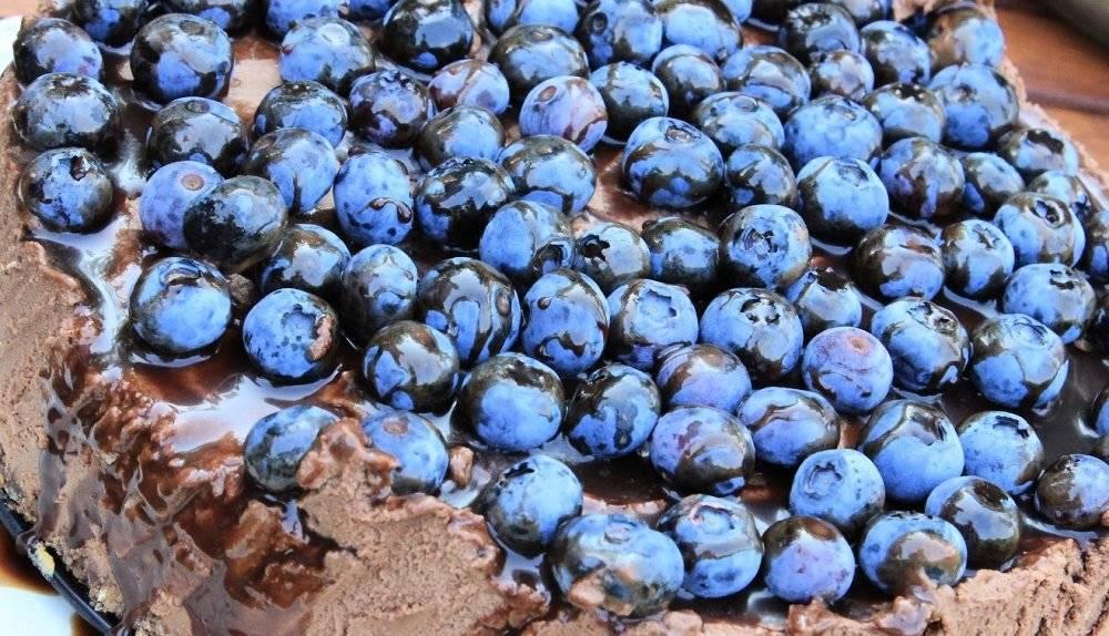 Блюголд: выращиваем популярный сорт голубики