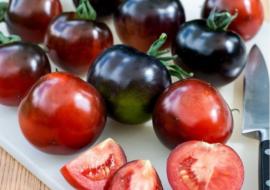 Интуиция — продуктивный сорт томатов для закрытого грунта, «вяжет без пропусков»