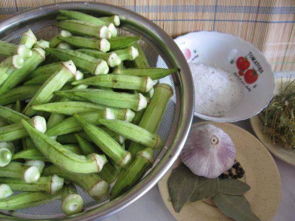 Топ 9 простых рецептов приготовления маринованной алычи на зиму