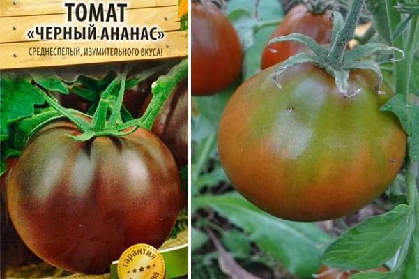 Томат енисей f1: описание и характеристика сорта, отзывы садоводов с фото