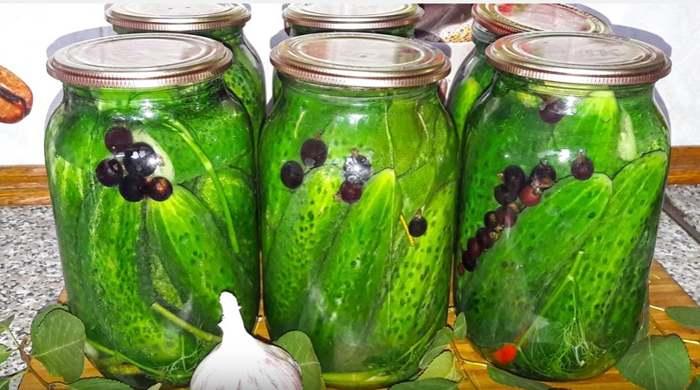 Хрустящие маринованные огурцы – 7 рецептов на зиму
