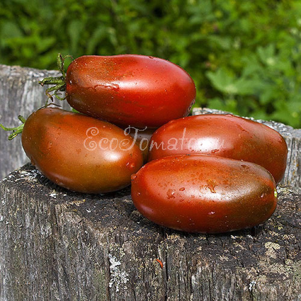 Для консервирования подойдет томат «засолочный деликатес»: подробное описание сорта