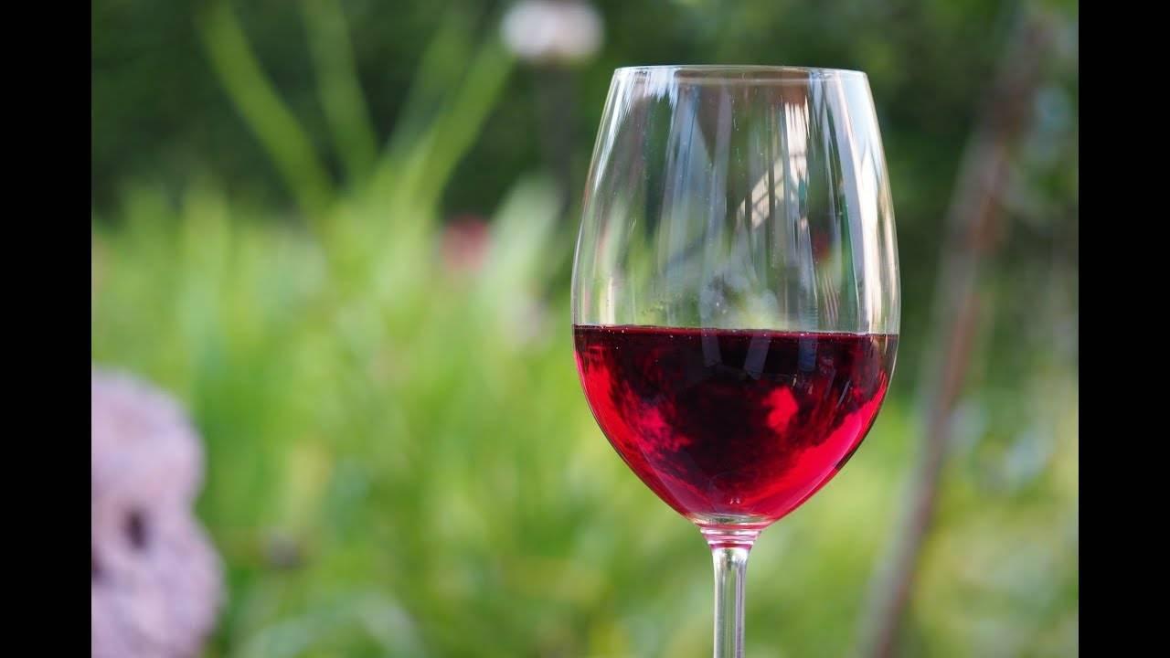 Домашнее вино прокисло что делать. что делать если вино получилось кислым