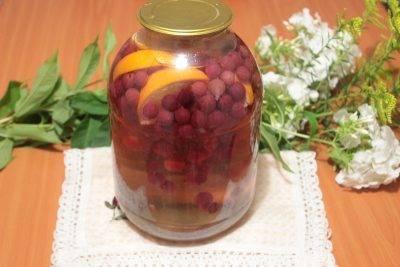 Компот из алычи на зиму на 3 литровую банку: подборка проверенных рецептов