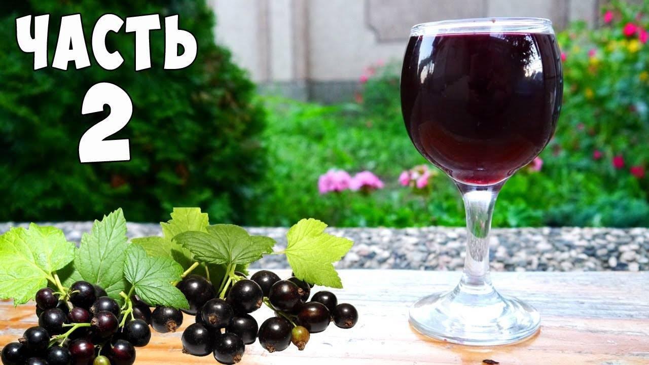 Как просто приготовить вкусное и ароматное домашнее вино из черешни