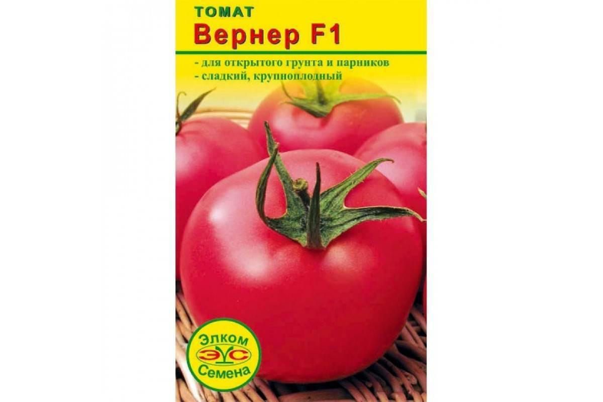 Капризный гигант с высокой урожайностью — гибридный сорт томата «торнадо»