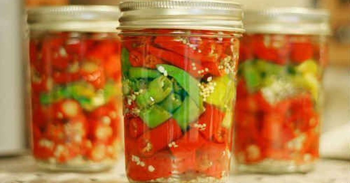 Как засолить горький перец на зиму холодным способом и другие рецепты кавказской кухни