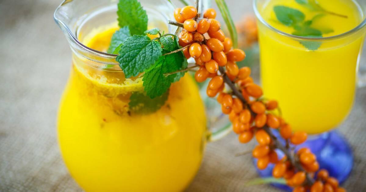 Рецепты из облепихи: компот и другие напитки