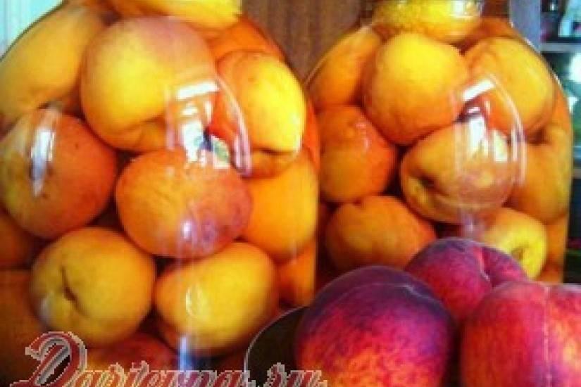 Персики на зиму. рецепты с фото