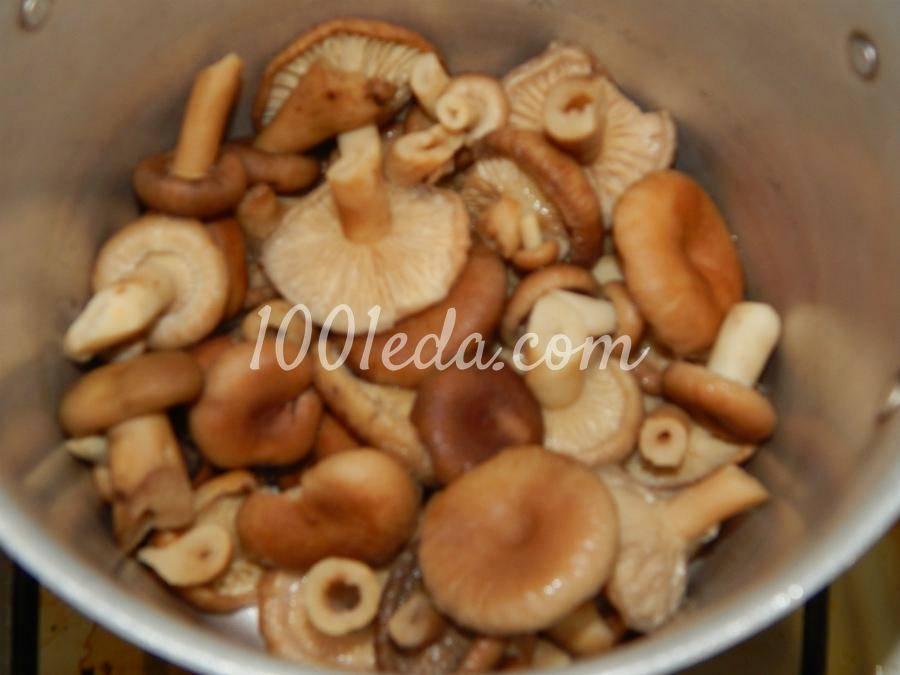 Маринованные волнушки: рецепт и фото