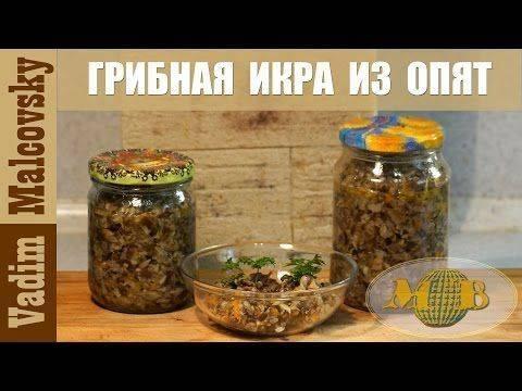 Как солить грузди на зиму: рецепты заготовок