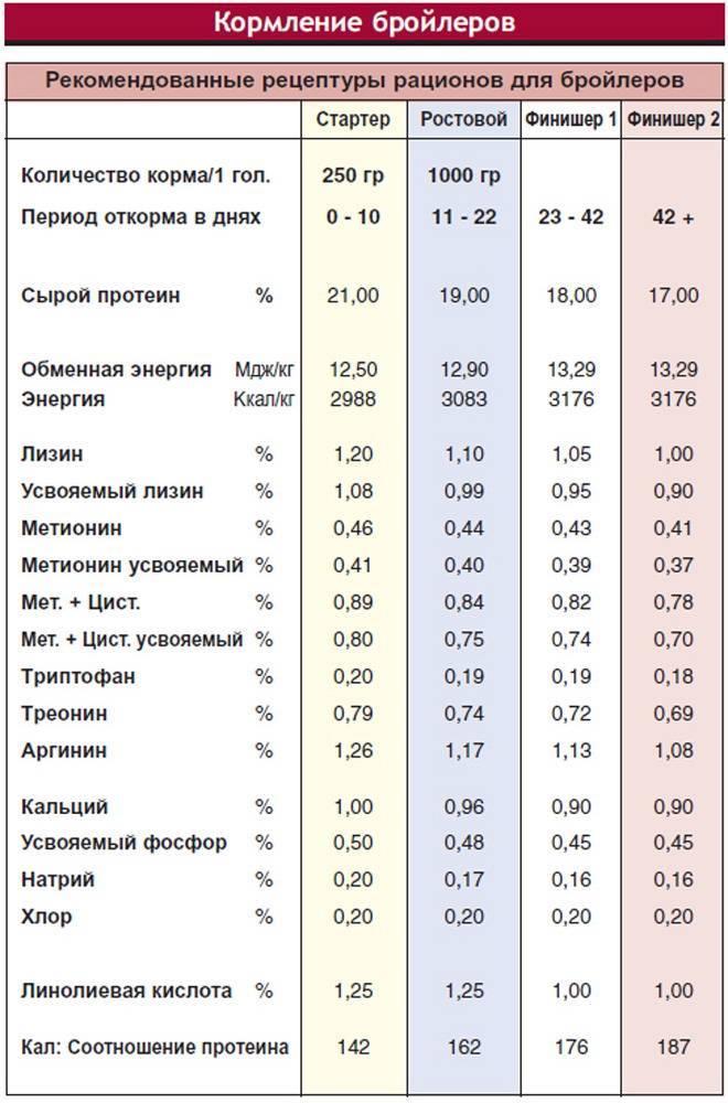 Таблица оптимальных показателей температуры для содержания бройлеров