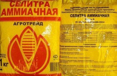 Кальциевая селитра – применение удобрения на огороде