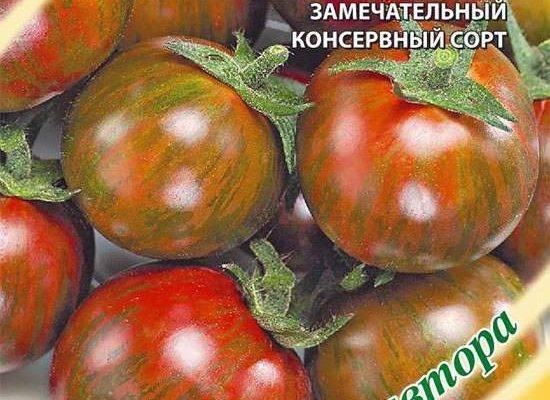 Описание сорта томата большой полосатый кабан, его характеристика и урожайность