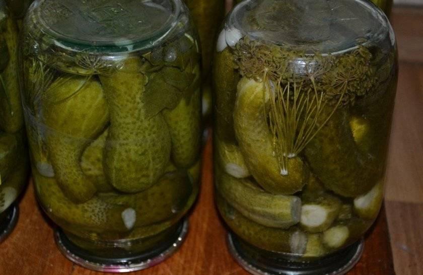 Рецепты маринования огурцов с медом на зиму