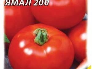 Томат ямал: отзывы фото урожайность характеристики и описание сорта, достоинства и недостатки