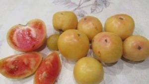 Томат лонг кипер — описание сорта, отзывы, урожайность