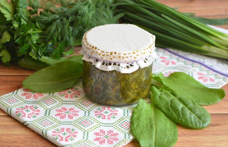 Витамины круглый год: заготовка щавеля на зиму. простые способы хранения зелени