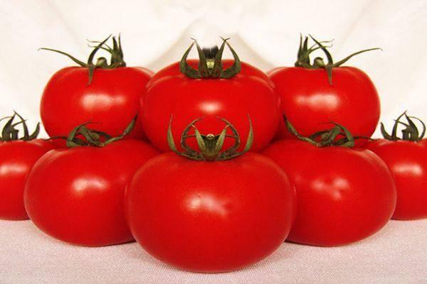 Популярный сорт томатов «большая мамочка»: особенности и правила выращивания