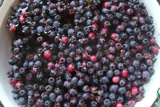 Пошаговый рецепт приготовления компота из ирги на зиму