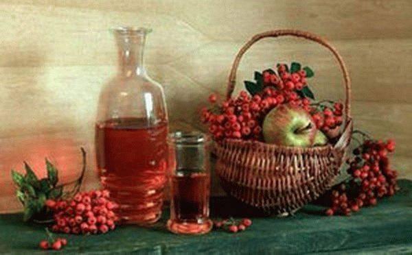 Как приготовить вино из черноплодной рябины — домашние рецепты
