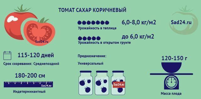 Оригинальный сорт «коричневый сахар» — томаты с темными плодами