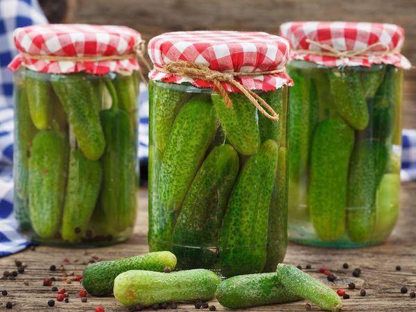 ТОП 12 рецептов приготовления засолки хрустящих и вкусных огурцов на зиму