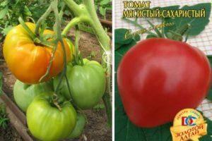 Сорт томата «тайфун» f1: характеристика и описание помидоров, урожайность, плюсы и минусы сорта