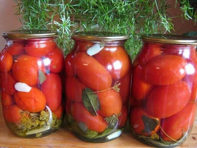 Почему в теплице во время созревании лопаются помидоры
