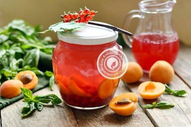 8 пошаговых рецептов приготовления желе из абрикосов на зиму