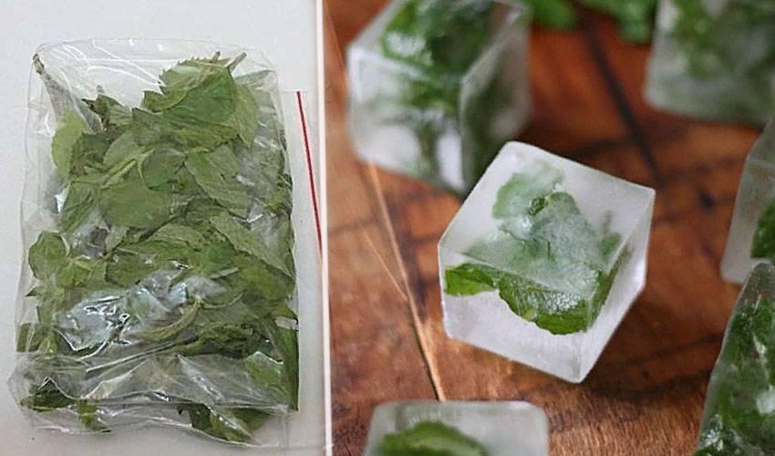 Как сохранить на зиму топинамбур? можно ли его заморозить?