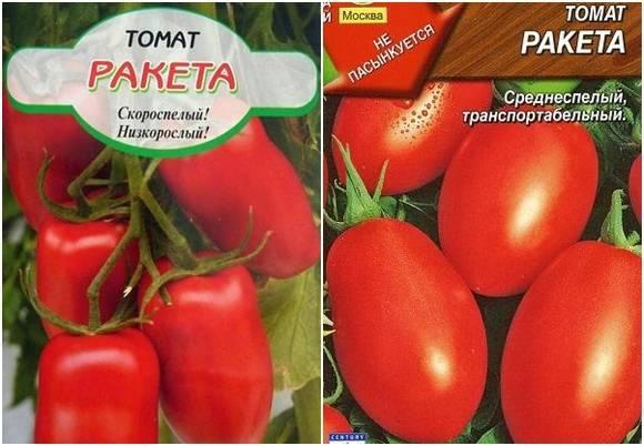 Томат ракета: отзывы, фото, урожайность