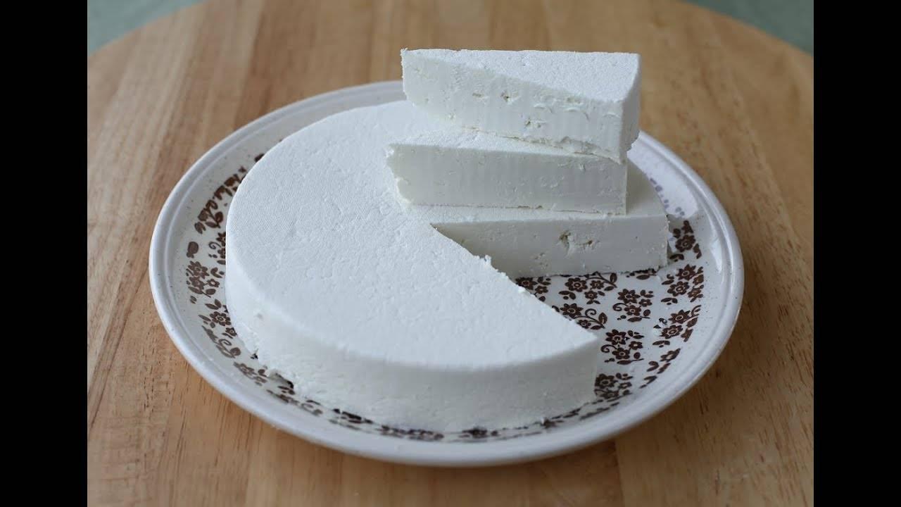 Рецепты приготовления сметаны из козьего молока в домашних условиях