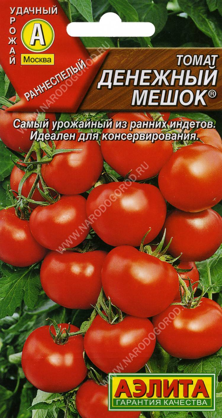 Описание сорта томата северный румянец и его характеристики