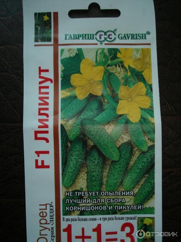 Характеристики и особенности выращивания огурцов сорта «лилипут f1»