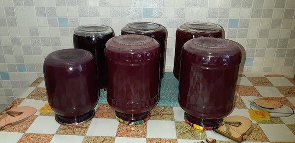 Способы приготовления виноградного сока
