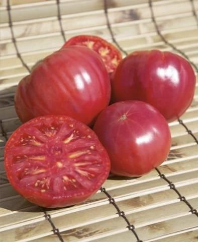 Томат торбей — крупноплодный салатный гибрид из голландии