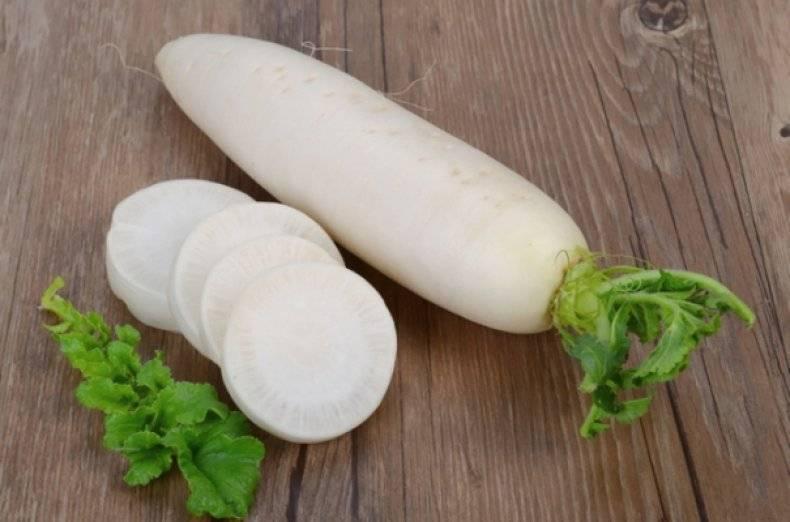 Рецепты приготовления блюд из дайкона