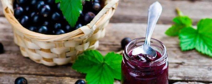 Желе из черной смородины на зиму - 5 простых рецептов с фото пошагово