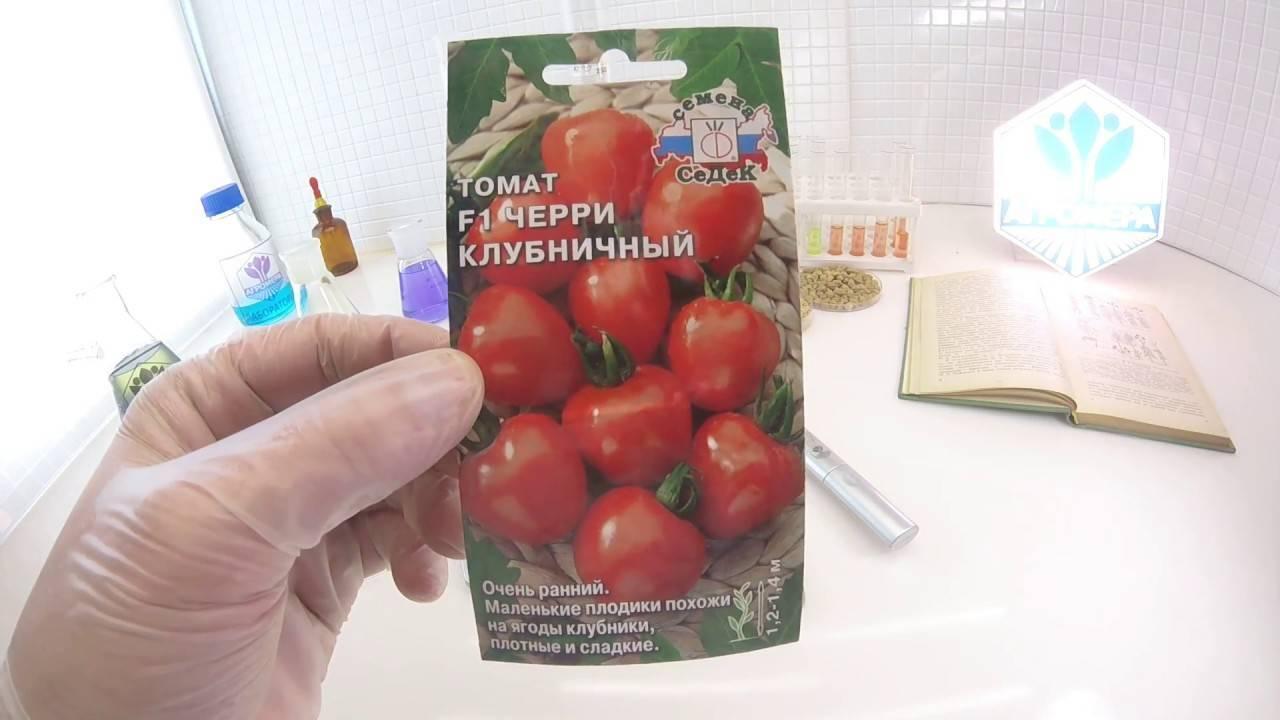 Преимущества и недостатки томата «торбей»: почему его стоит попробовать вырастить