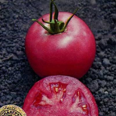 Характеристика и описание сорта томата Пинк уникум, его урожайность
