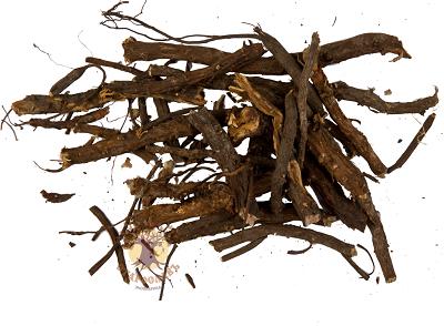 Калган корень лечебные свойства щитовидка