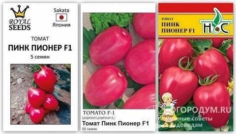 Томат «пинк буш f1»: высокая урожайность гарантирована