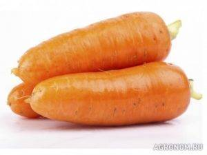 Исследование состава биологически активных веществ моркови сорта «абако», выращиваемой в краснодарском крае