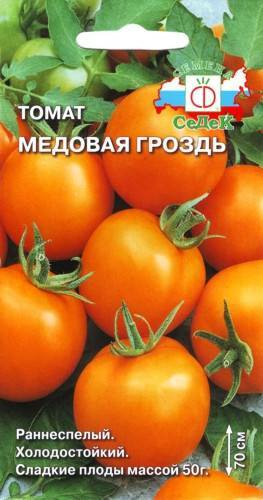 Томат медовый: урожайный и неприхотливый